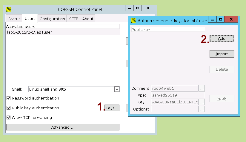 Copssh Control Panel - User - Keys